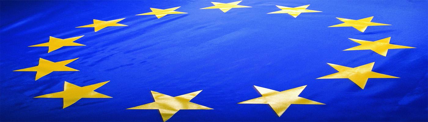 шенген флаг1